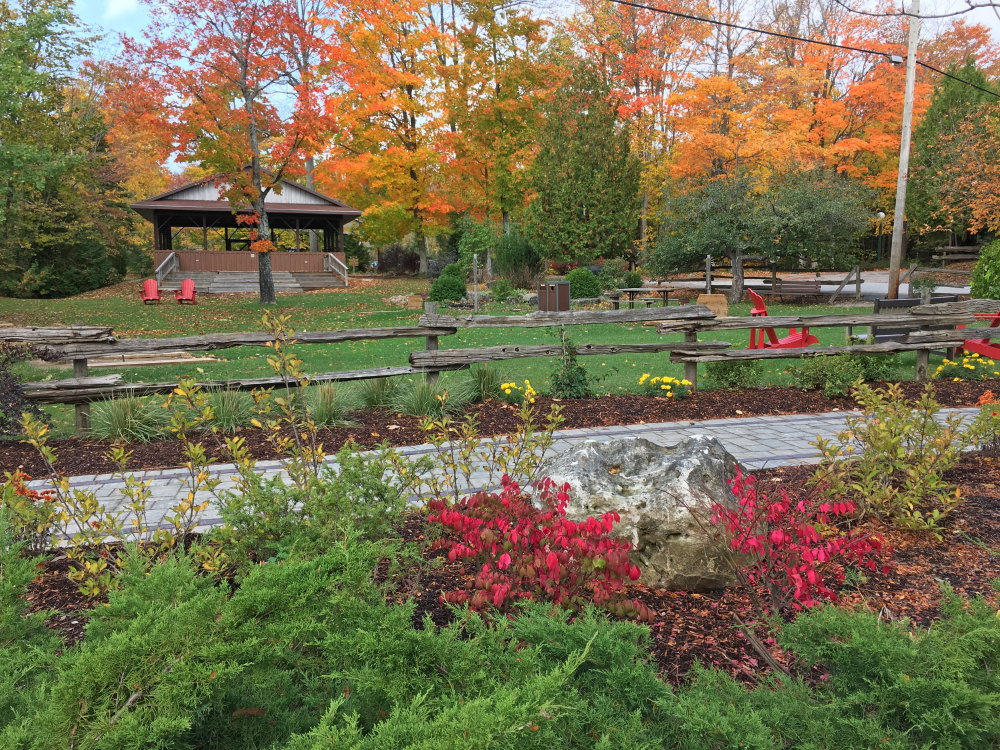 Enjoy vibrant fall colours