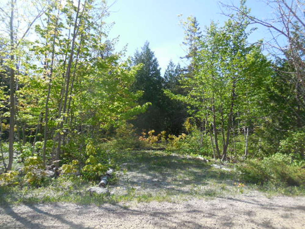 Building Lot, 40 Lindsay Rd. 40, N. Bruce Peninsula $69,900 SOLD