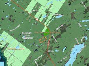 100 Acres Treed Bush - Miller Lake area $109,900